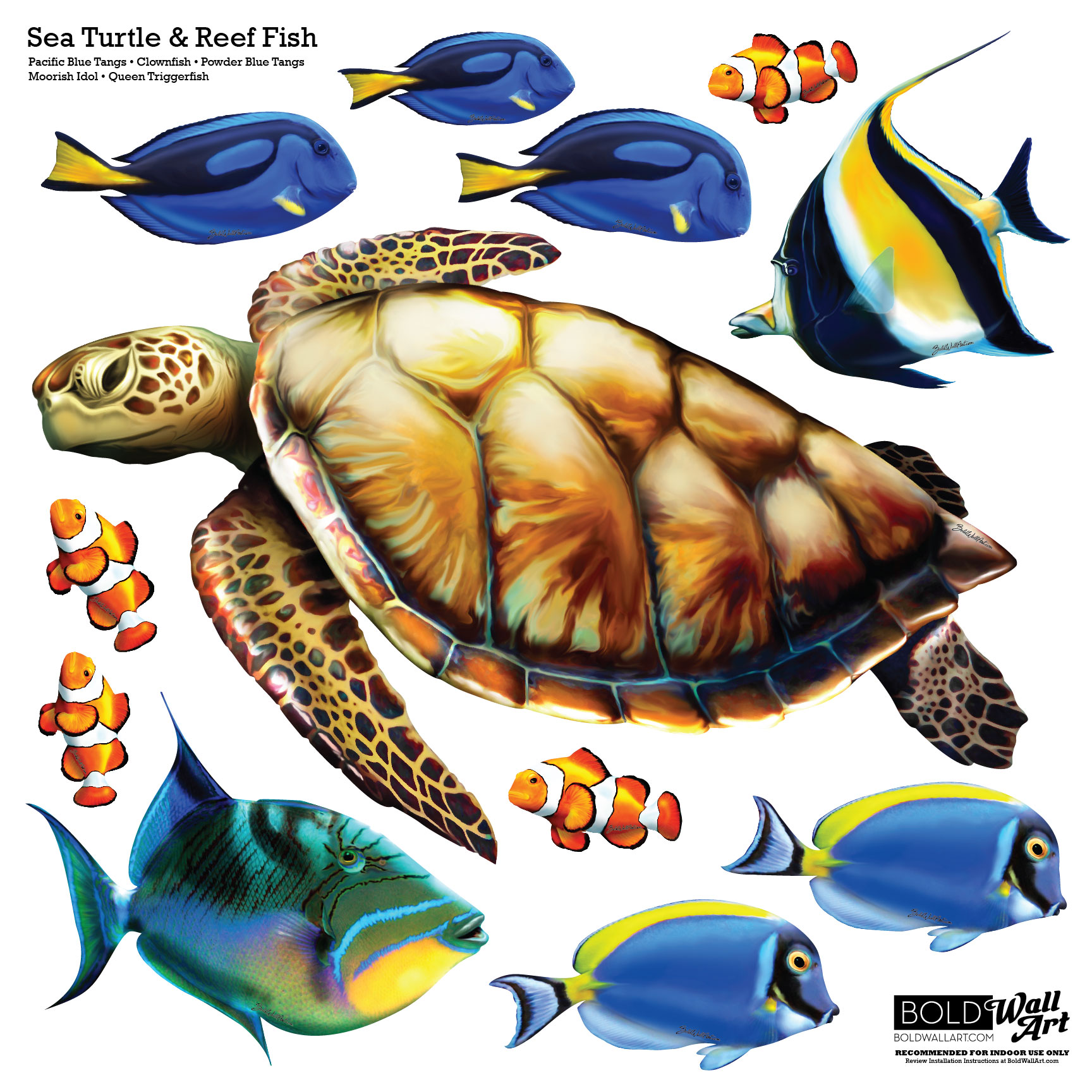 Sea turtle and reef fish wall decal set bold wall art for Turtle fish games