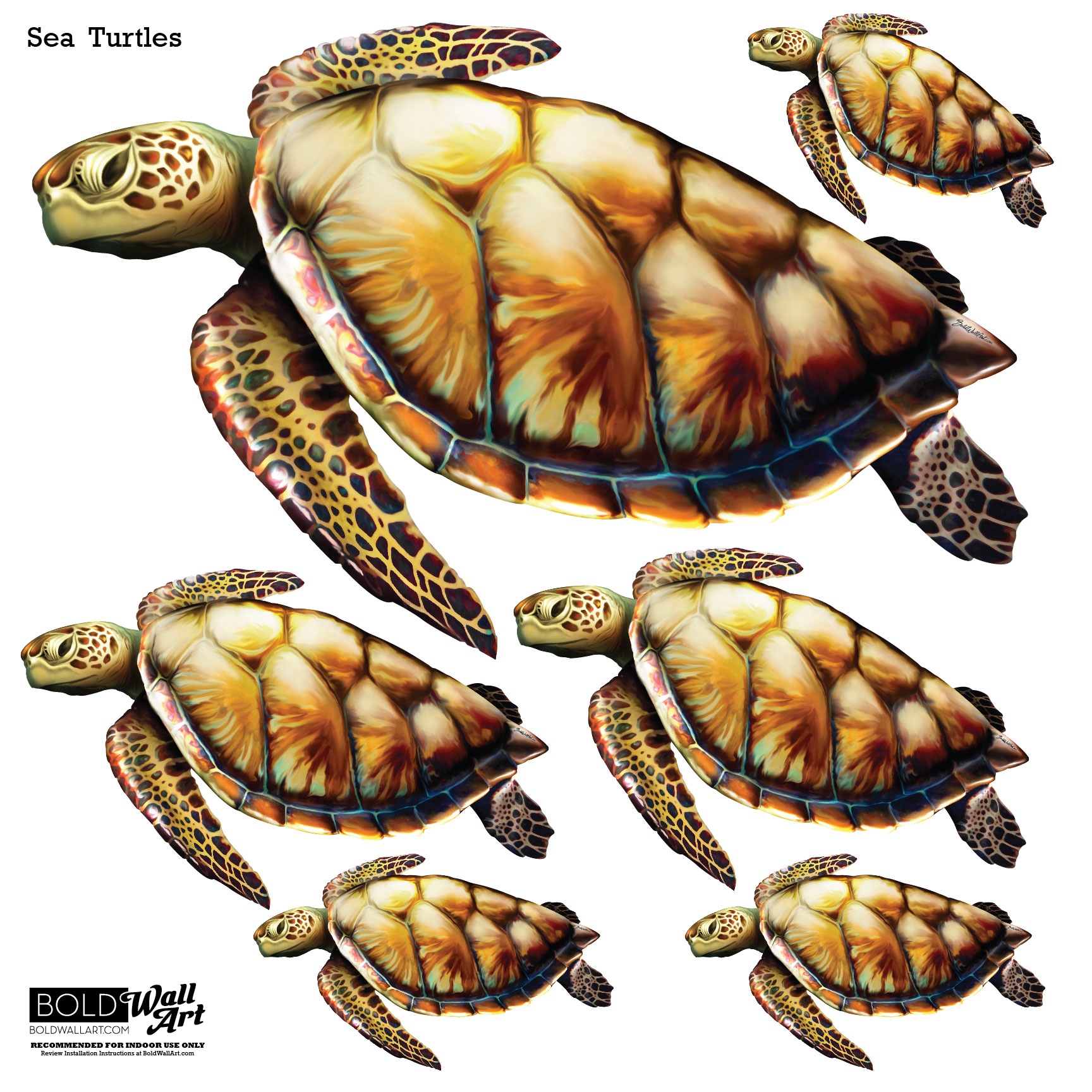 bold wall art sea turtle wall stickers turtle wall decal sticker sea animals tortoise shell decals