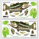 Largemouth Bass Wall Sticker Sets