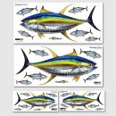 Yellowfin Tuna Wall Art Sticker Sets