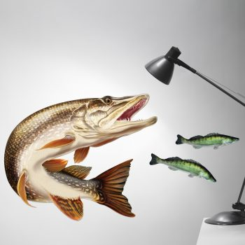 Northern Pike Wall Sticker