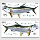 tarpon-wall-decal-options